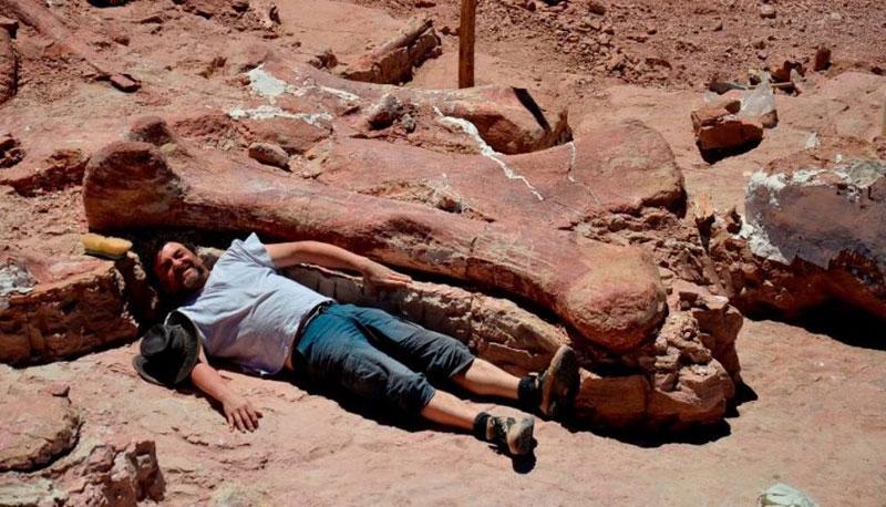 Museo Storia Naturale New York.Un Titanosauro Da 37 Metri Al Museo Di Storia Naturale Di New York